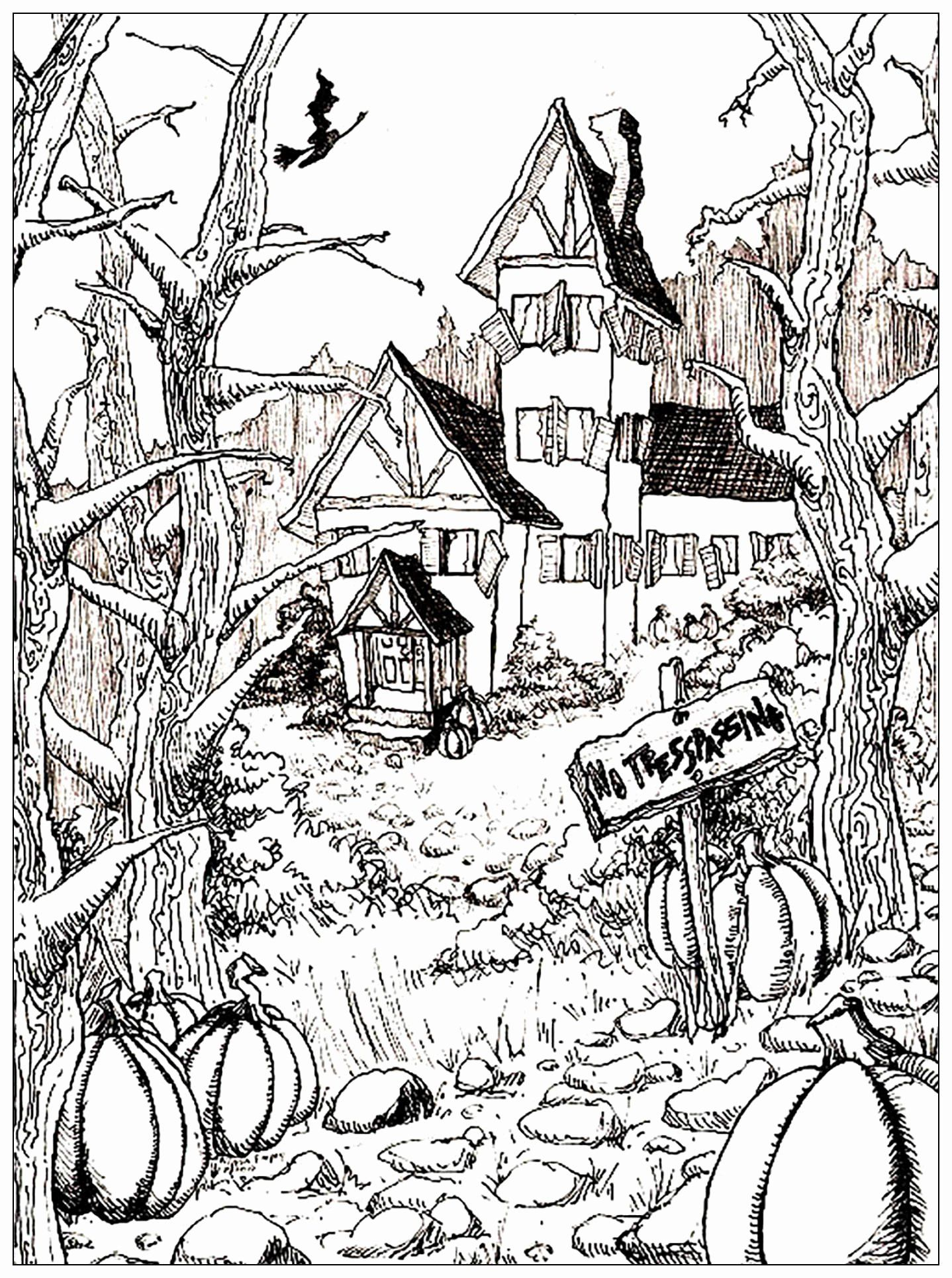 House Coloring Pages For Adults Lovely Haunted House And Pumpkins Ha In 2020 Halloween Coloring Pages Printable Halloween Coloring Pages Scary Halloween Coloring Pages