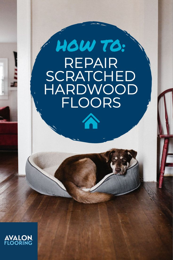 How to remove scratches from hardwood floors hardwood