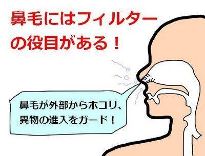 鼻くそ が よく たまる