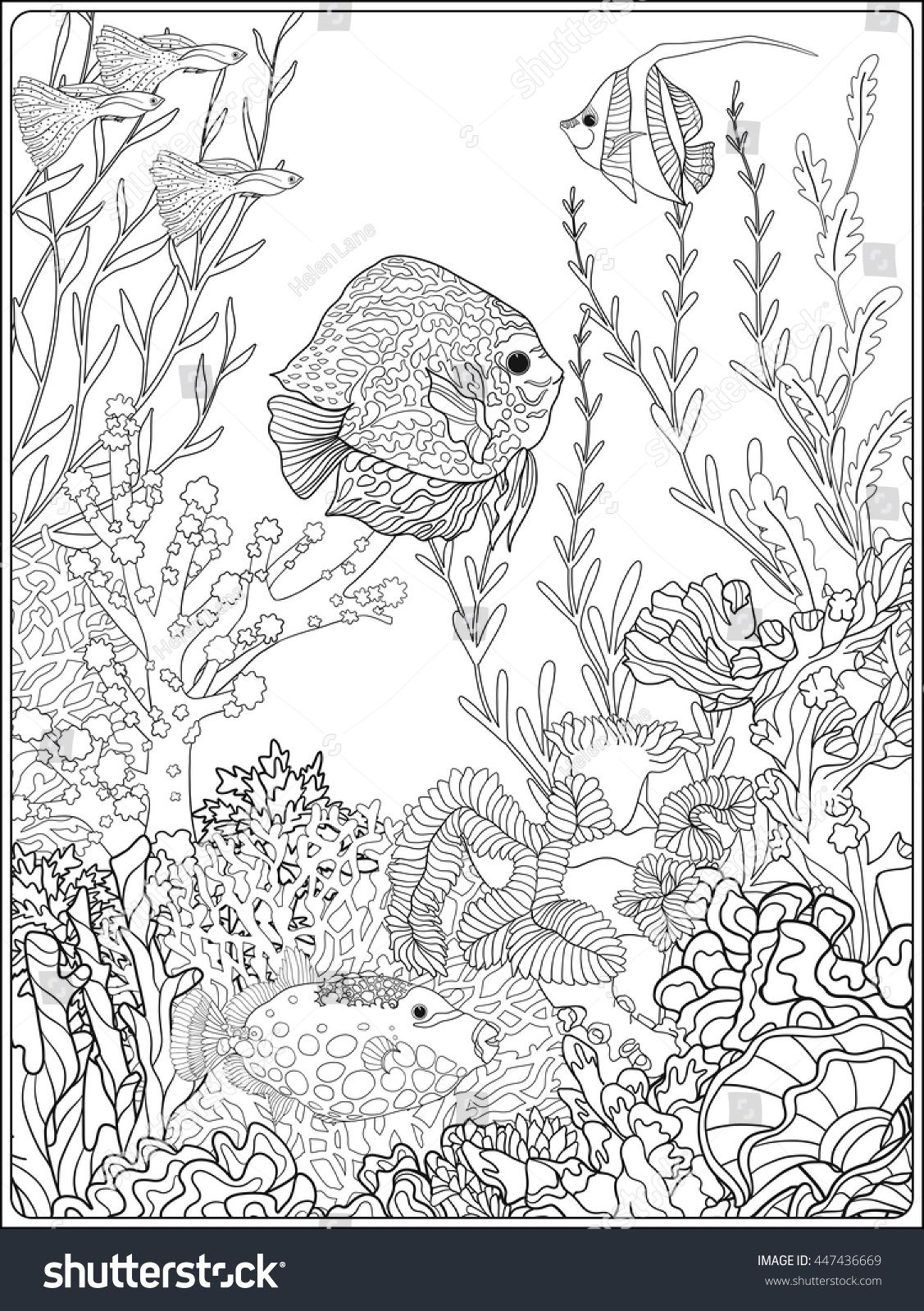 Adult Coloring Book Page With Underwater World Coral Reef Corals Fish And Seaweeds Outline Vector Illustration