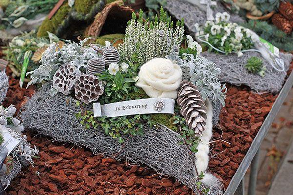 News & Events - Bühlers Gartenwelt #allerheiligengrabschmuck
