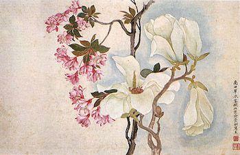 """""""Magnolias"""" by Yun Shou-p'ing"""