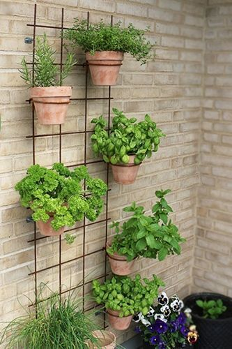 Photo of #gardenideas