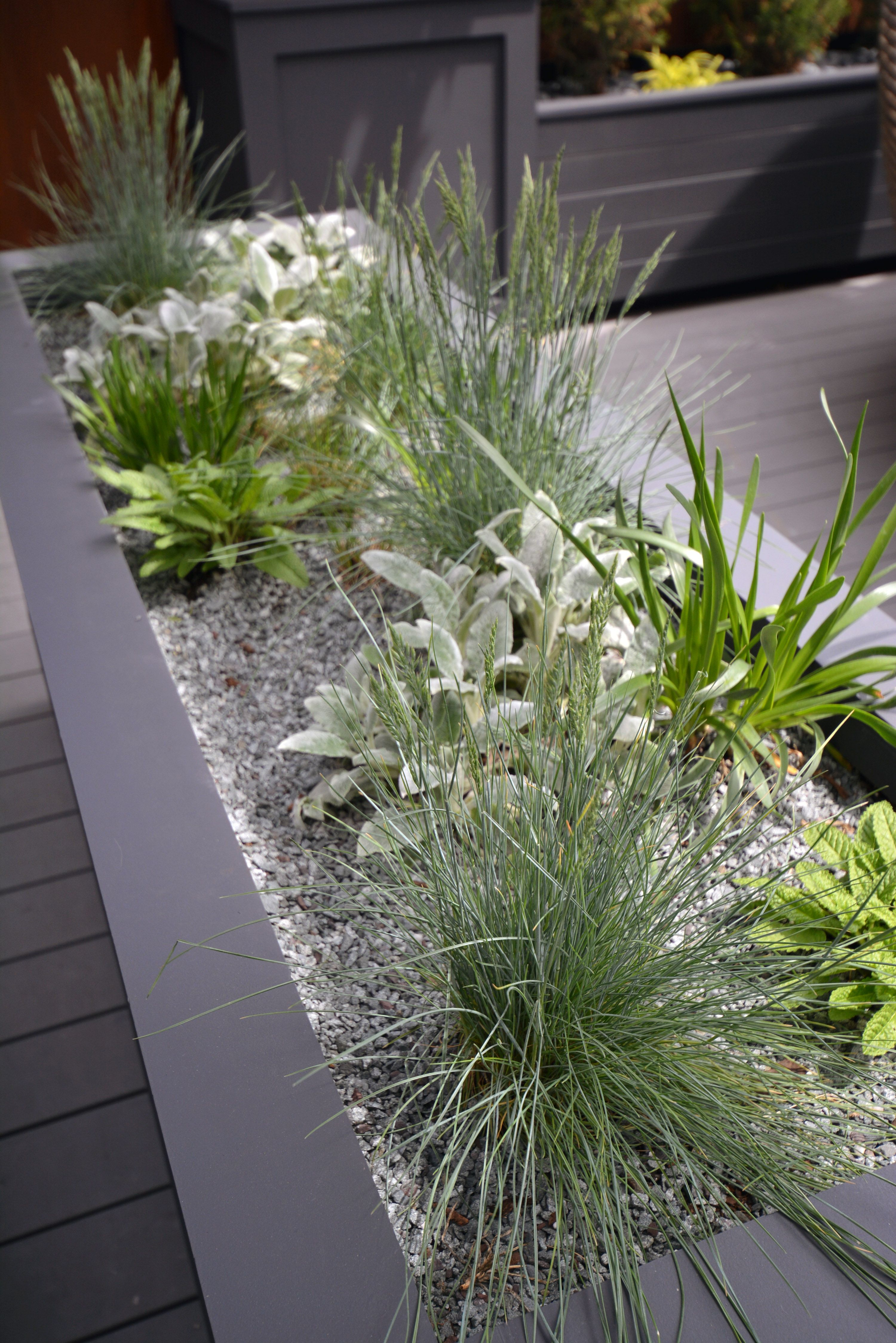 Roof Top Planting Containers Perennials Pea Gravel Corrugated Plastic Roofing Plastic Roofing Pergola Attached To House