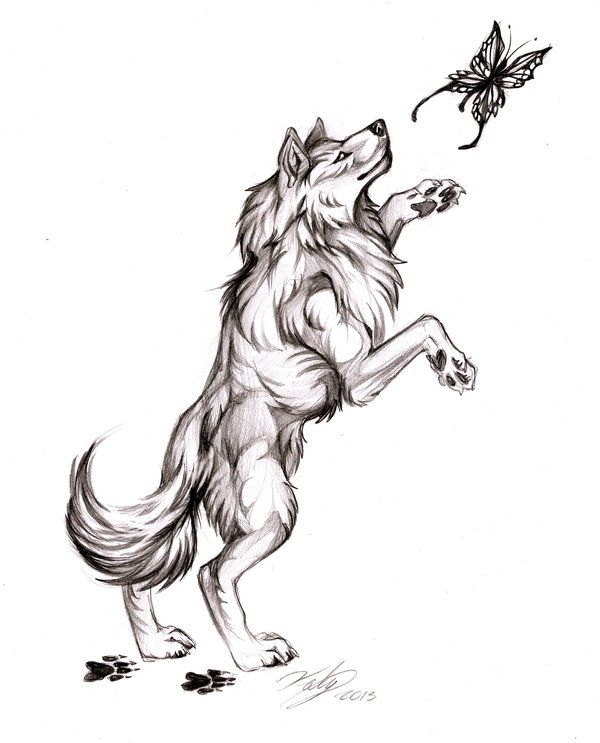 Wolf And Butterfly Tribal Wolf Tattoo Wolf Tattoo Wolf Tattoo Shoulder