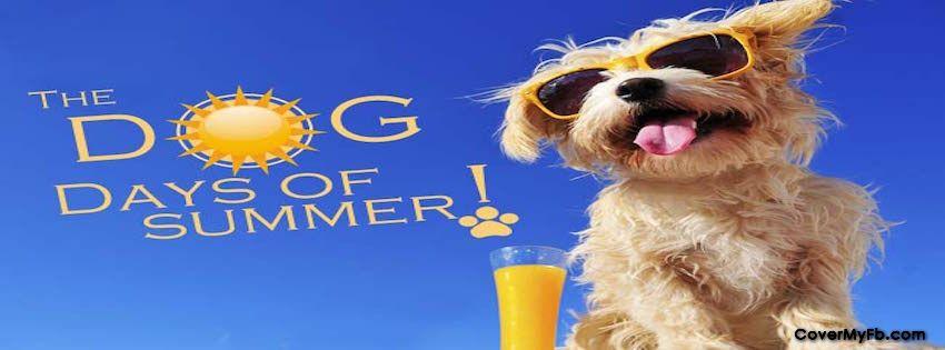 Dog Days Of Summer Facebook Covers Dog Days Of Summer Fb Covers Dog Days Of Summer Facebook Timeline Covers Facebook Cover Facebook Cover Images Summer Memes