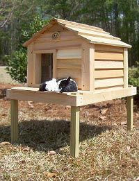 possibility for an outdoor cat house