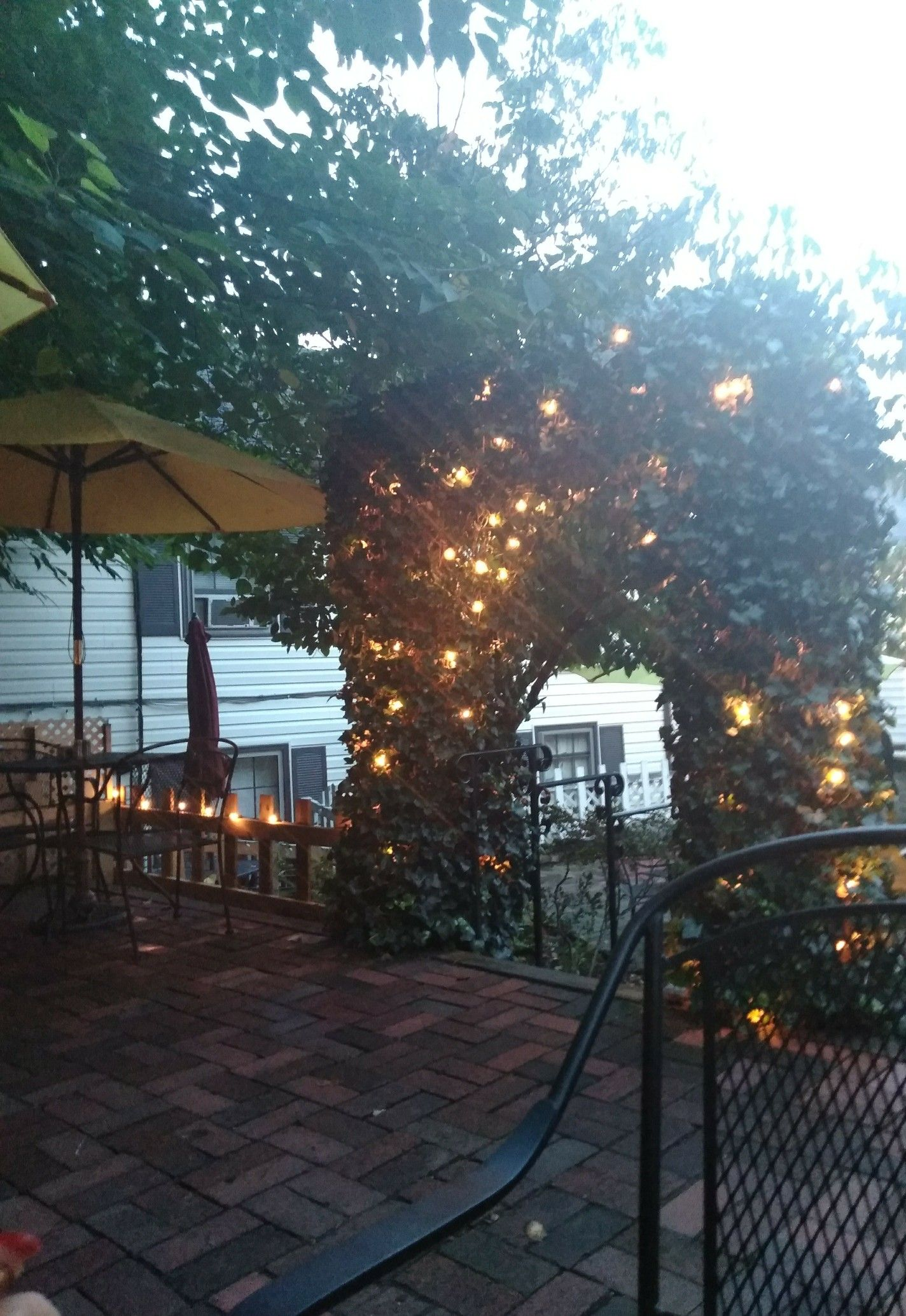 The Secret Garden Cafe Occoquan Va Garden Cafe Cool Cafe Cafe Restaurant