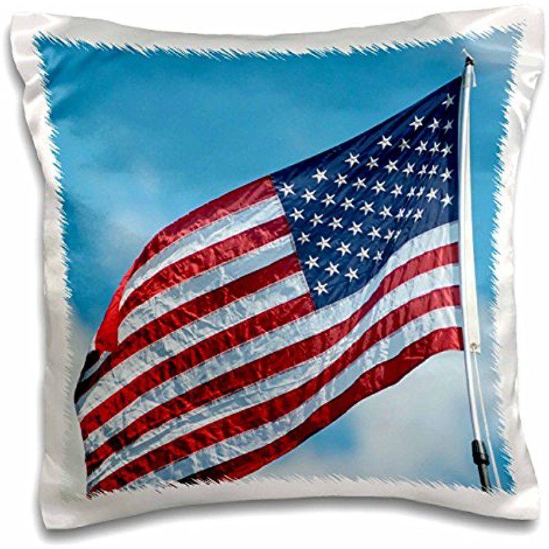 3drose Danita Delimont Flags Usa Florida American Flag 16x16 Inch Pillow Case Pc 259183 1