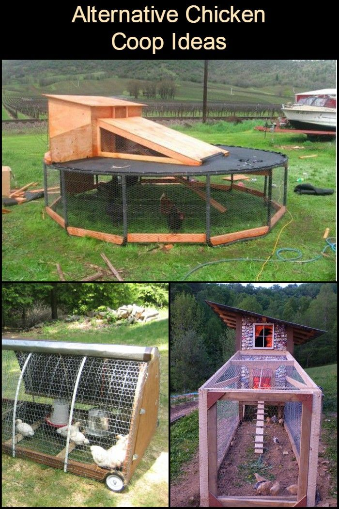 Give Your Chickens A Unique Home With These Alternative