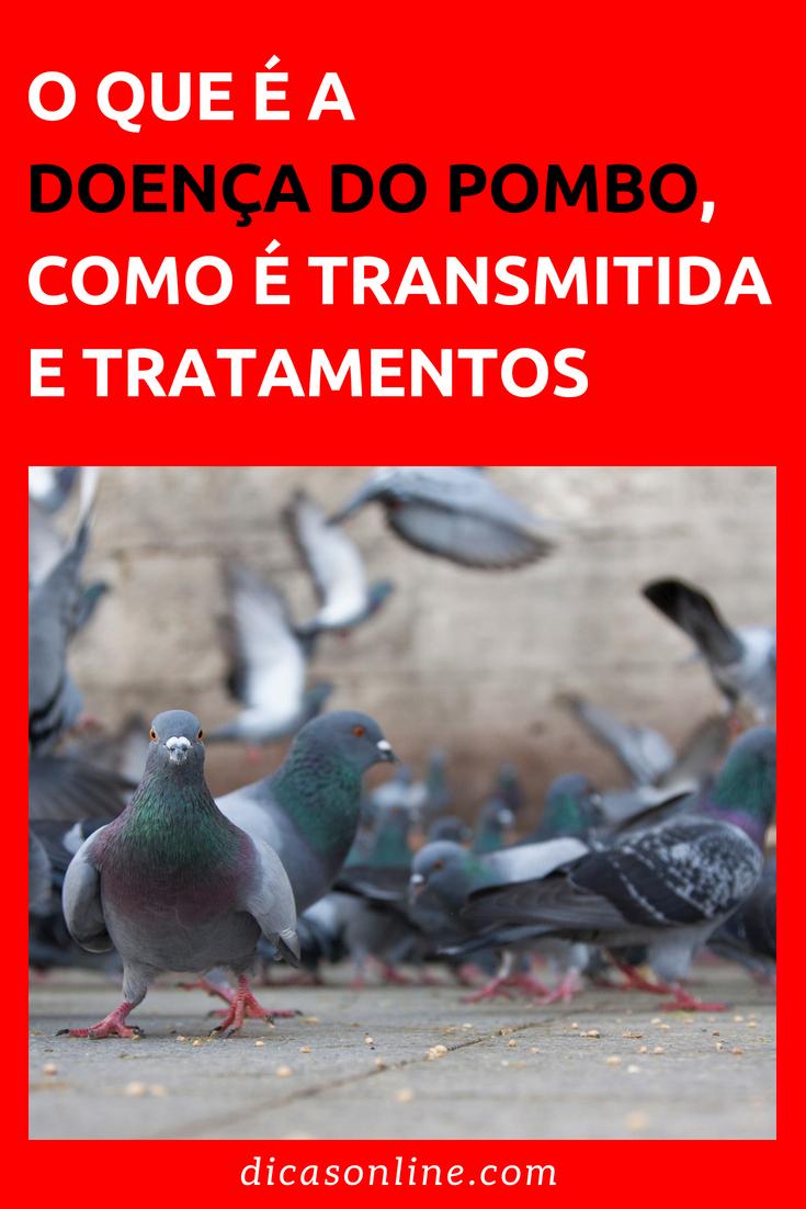 Doenca do pombo transmissao