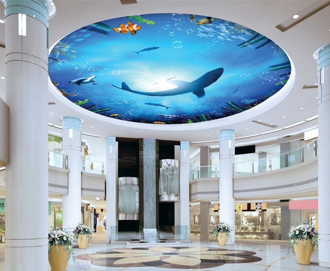 D cor plafond personnalis fond marin le requin for Requin decoration