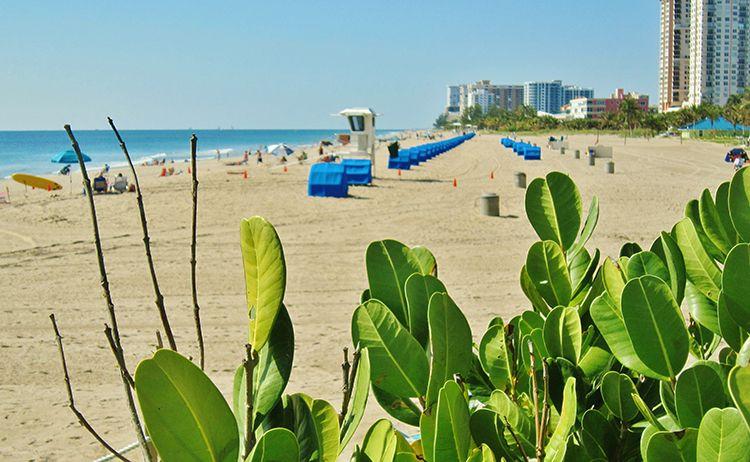 Southern Florida Syden For Norwegian Americans Norwegian Dream Destinations American