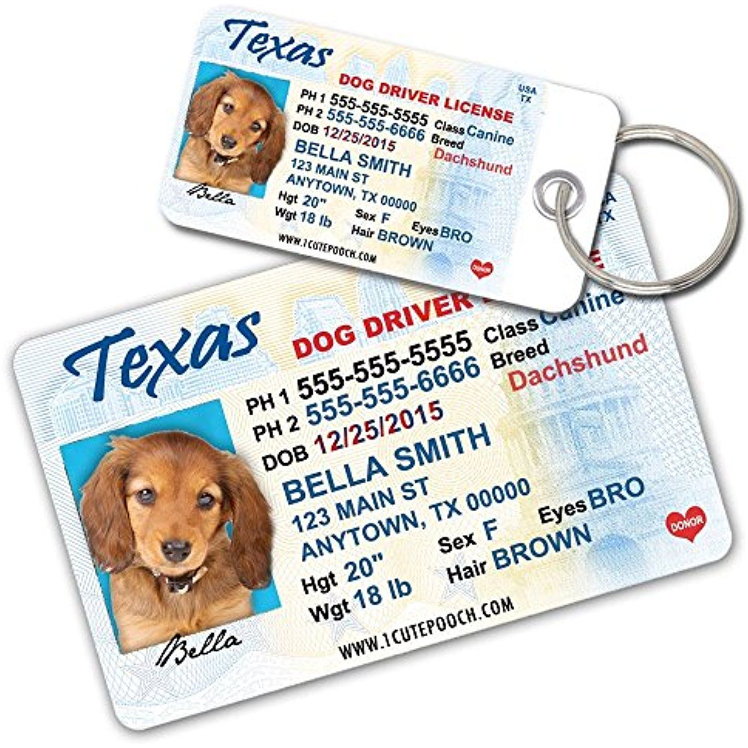 Texas Driver License Custom Dog Tags for Pets (2) and