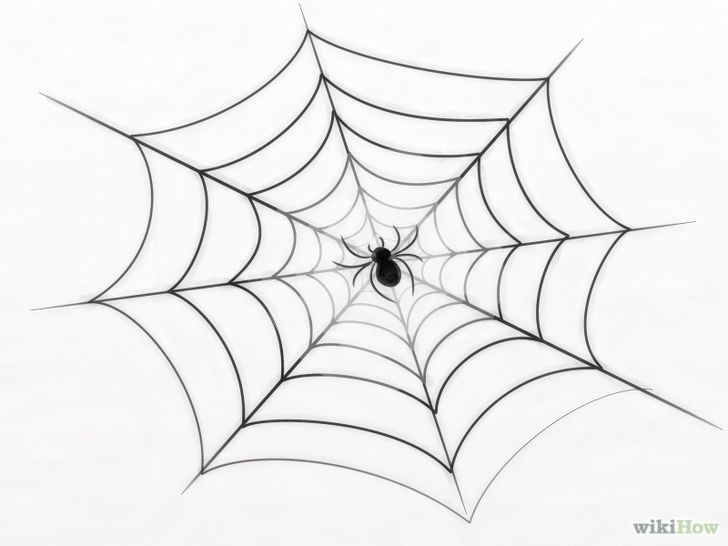 Draw A Spider Web Spiderman Drawing Spider Drawing Spider Web