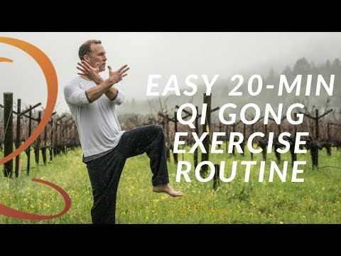 20min qi gong exercise routine  easy home workout with