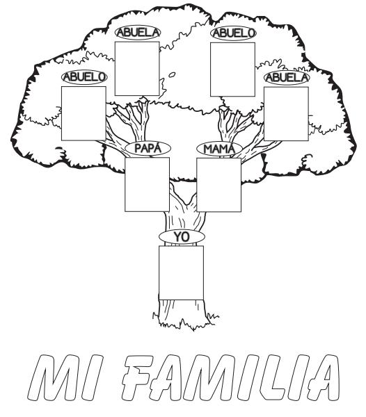 El rbol geneal gico trabajamos el tiempo y su medida http for Nombres de arboles en ingles