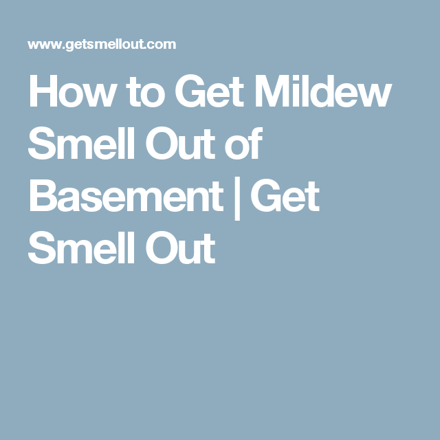 mildew smell in basement how to get rid of smell