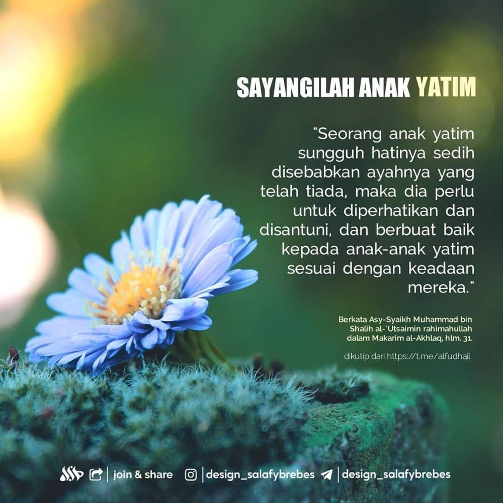 Design Salafybrebes On Instagram Sayangilah Anak Yatim Media Design Salafy Brebes Joint Cha Photography Love Quotes Nature Quotes Islamic Quotes