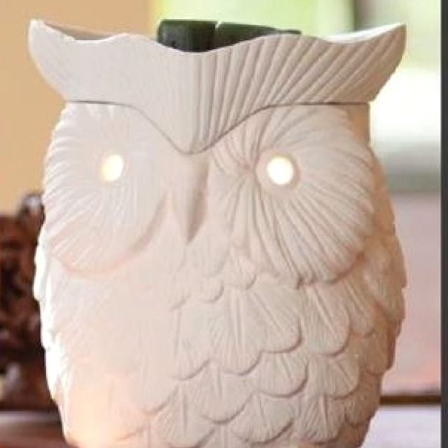 $31 adorable whoot owl warmer! BresWax.Scentsy.us