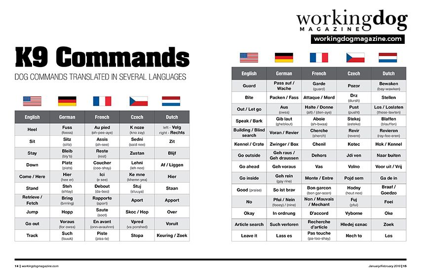 Issue 7 Dog Commands Working Dogs Military Working Dogs