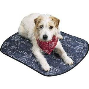Cooling Systems For Livestock Dog Mat Puppy Cold Dogs