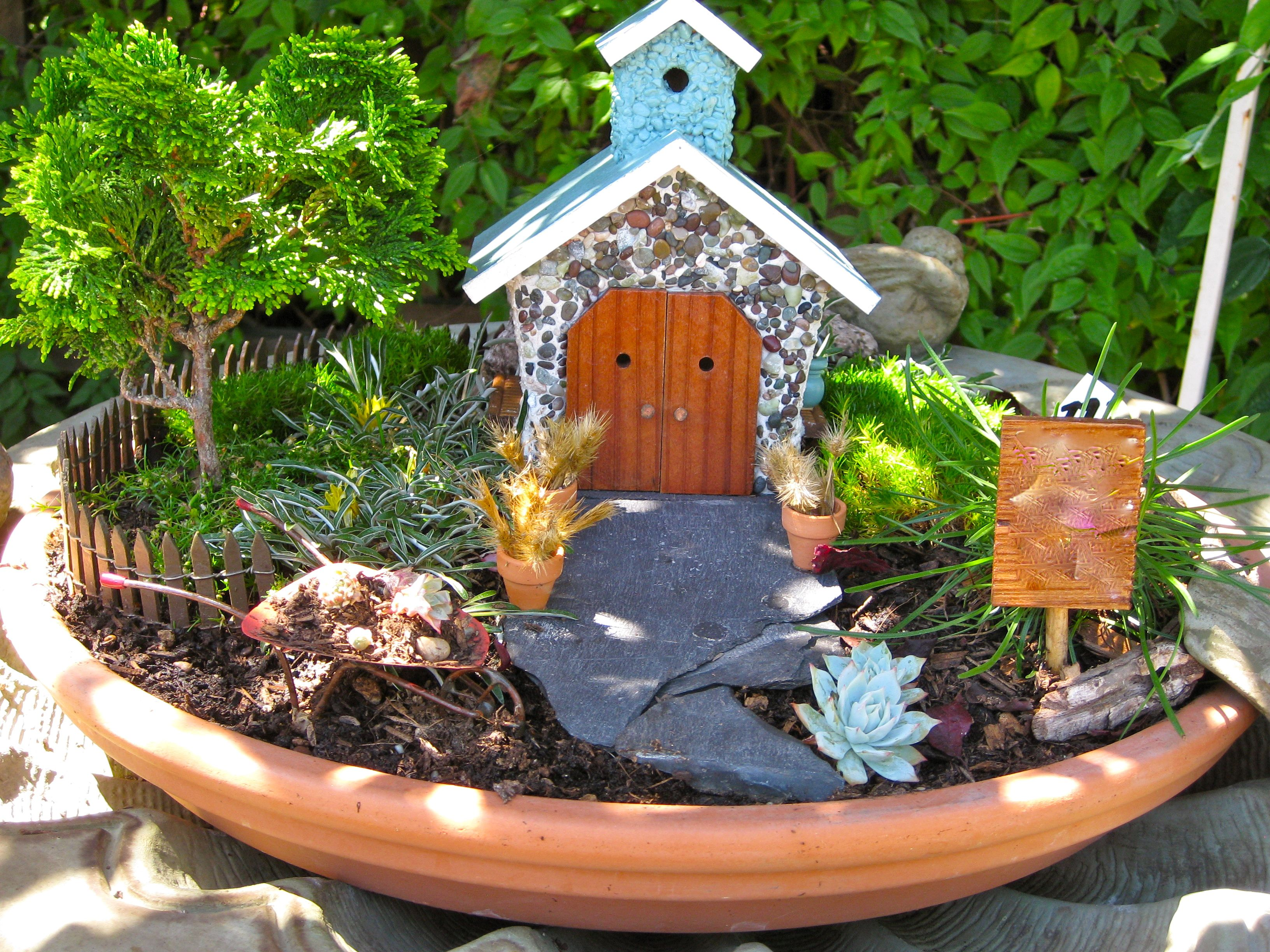 Mini Garden in Terracotta Dish Gardens and Plants