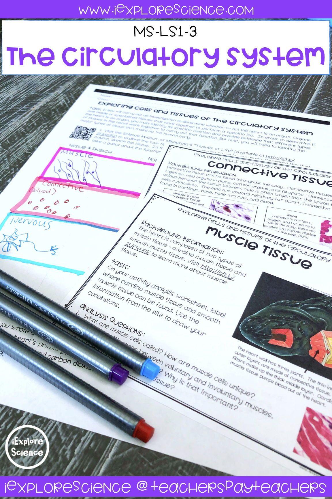 This 5e Explore Lesson Investigates Cells And Tissues Of