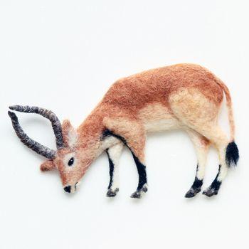 リーチュエというアフリカの動物。ニット帽に付けてもかわいいですね。