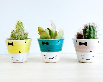 Ceramic small plant pot Ceramic planter Succulent por noemarin