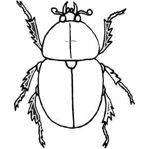 Big Beetle My Grandbabies Coloring Pages Free Printable