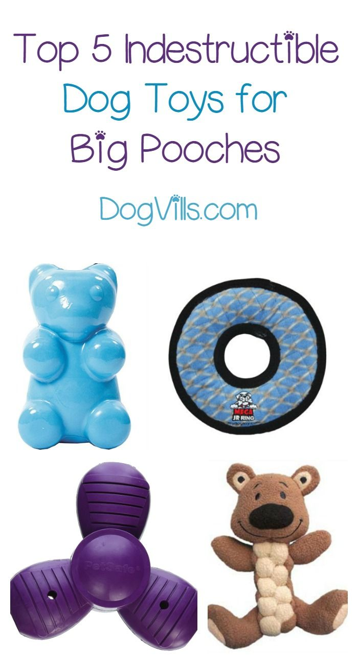 The 5 Most Indestructible Dog Toys Dog Toys Best Dog Toys Toy