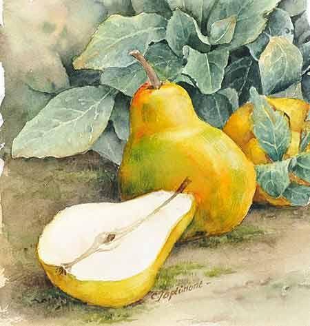 Epingle Par Gerard Greget Sur Aquarelles Fruits Aquarelle