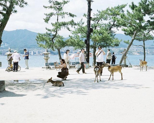 Hisaya Katagami, via Flickr