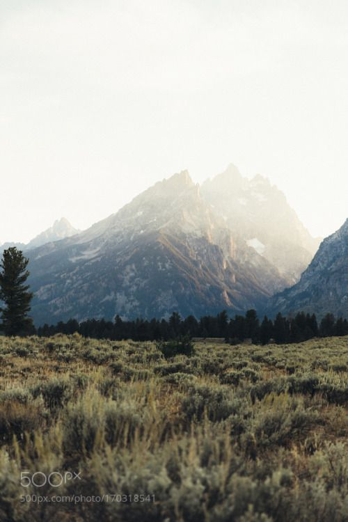 Golden hour in the Tetons by imbradenolsen  landscape sunset mountains nature travel canon road trip wyoming grand teton national park outdoors