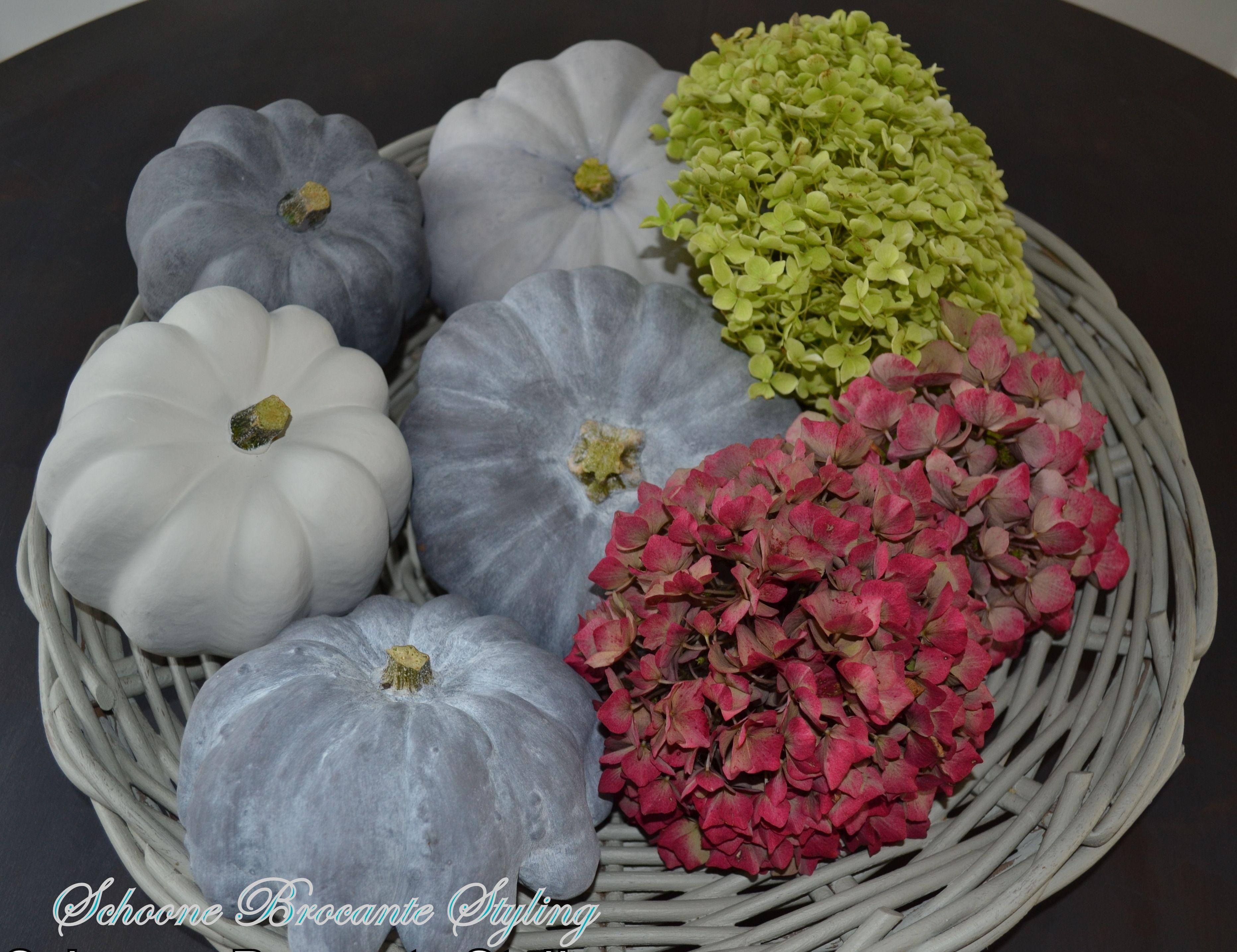 Pin by beata schoonegolla on bloemen bloembollen pinterest