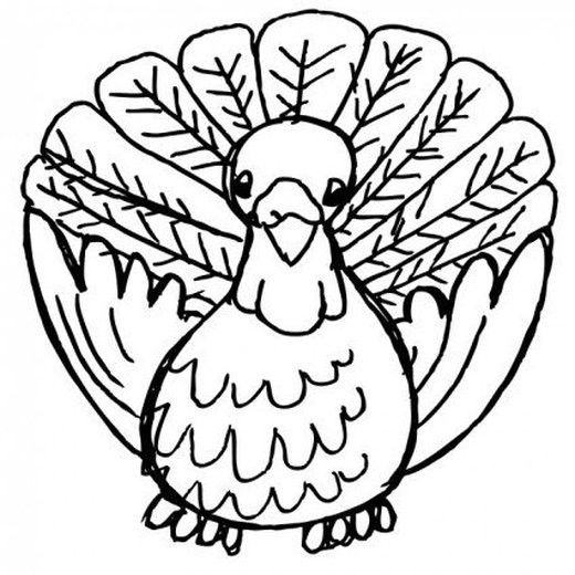 250 Thanksgiving Pictures And Images Turkey Clip Art Thanksgiving Clip Art Turkey Art