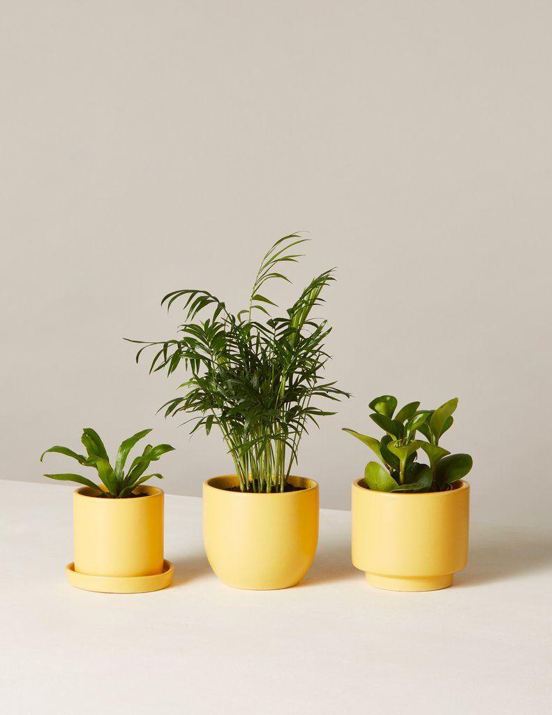 Vintage Ceramic Planter-Mint Green-Indoor Planter-Ribbed Flower Pot-Succulent Herb Planter-Midcentury Decor