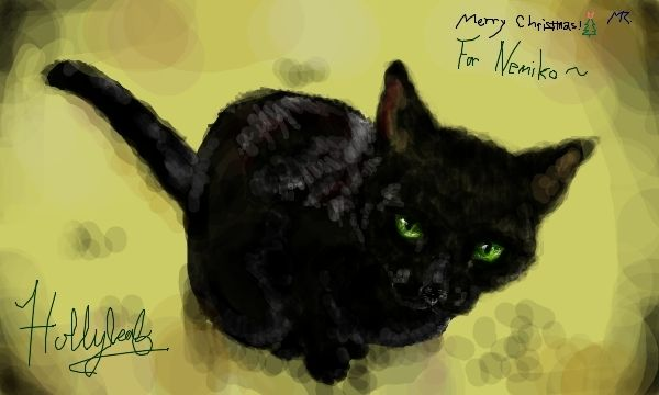 Wallpaper And Background Photos Of HollyLeaf For Fans Warriors Novel Series Images