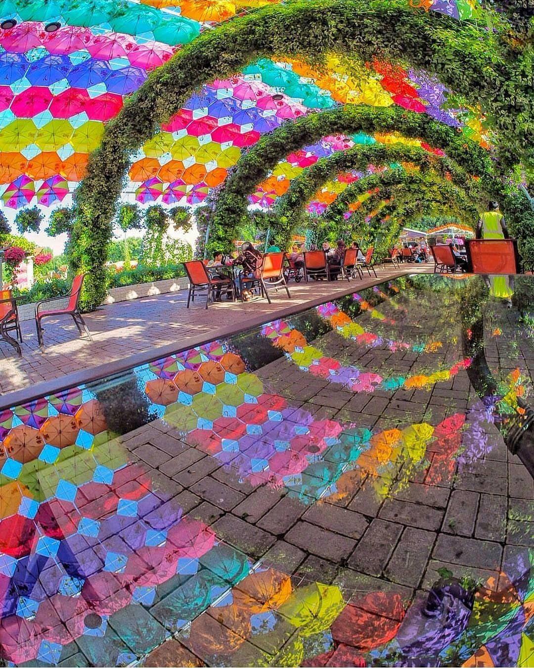 Dubai Miracle Garden Natură, Locuri