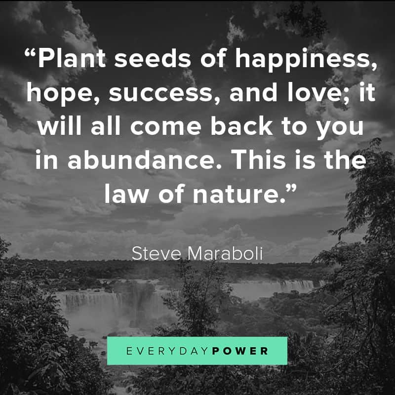95 Nature Quotes About Reconnecting With Mother Earth Mother Nature Quotes Nature Quotes Inspirational Nature Quotes