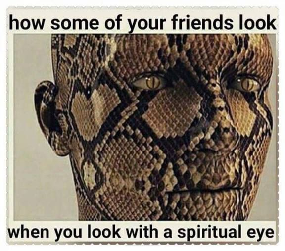Mercyfulgrace Diaries With Negative People Spiritual Eyes Fake Friend Quotes Snake Quotes