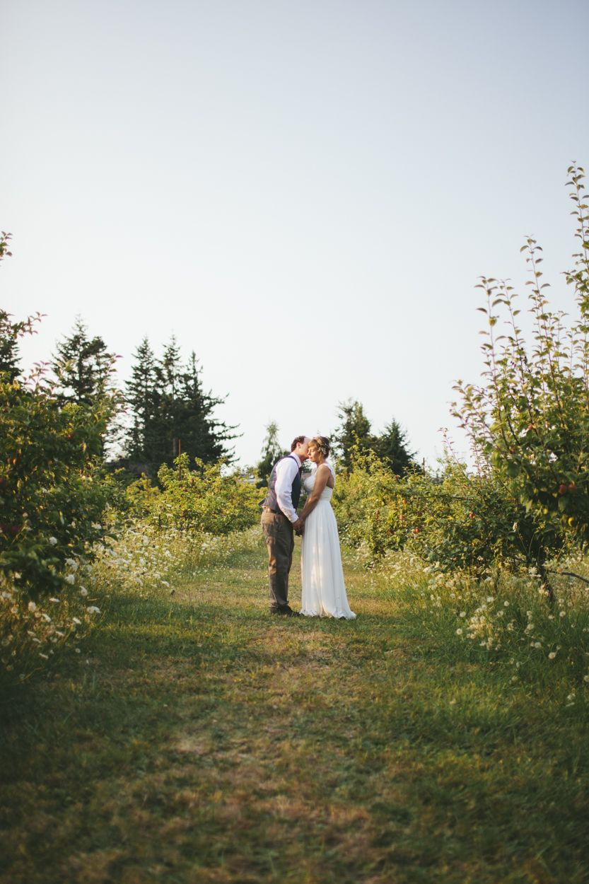 Pin by Sea Cider Farm & Ciderhouse on The Orchard