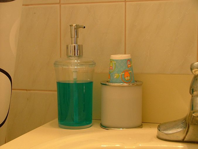 Best 25 Mouthwash Dispenser Ideas On Pinterest Vinegar