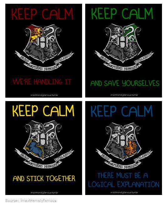4 Houses And Their Slogans Harry Potter Hauser Harry Potter Witze Und Harry Potter World
