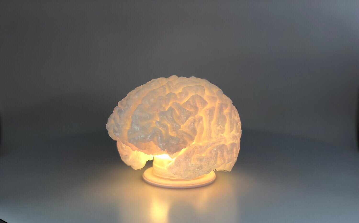Brain Lamp Rechargeable Water Proof Includes Remote Etsy Plastic Design Lamp 3d Printing