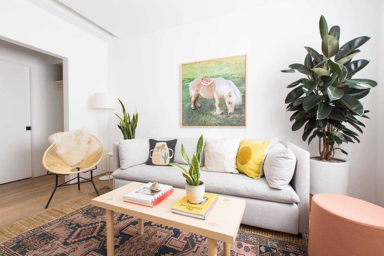 Best Pug Parents' Colorful Minimalist Home Rue Minimalist 640 x 480