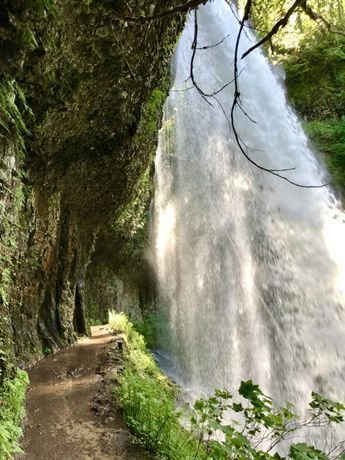 Middle North Falls   Oregon's Trail of Ten Falls doesn't get as much attention as Multomnah, but it's totally stunning and offers 10 waterfalls, a moderately easy hike, and is easy driving distance from Portland   why you should hike the Trail of 10 Falls in Silver Falls State Park #oregon #waterfalls #trailoftenfalls