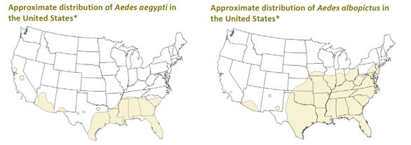 Distribution maps of aedes aegypti and aedes albopictus mosquitoes distribution maps of aedes aegypti and aedes albopictus mosquitoes in the united states the aedes sciox Gallery