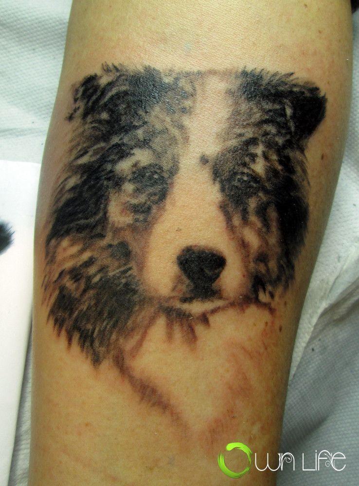 Australian shepherd faye tattoo on lower sleeve